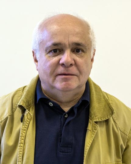 Carlos Henrique Marques da Rocha